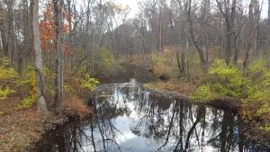 19-crum-elbow-creek